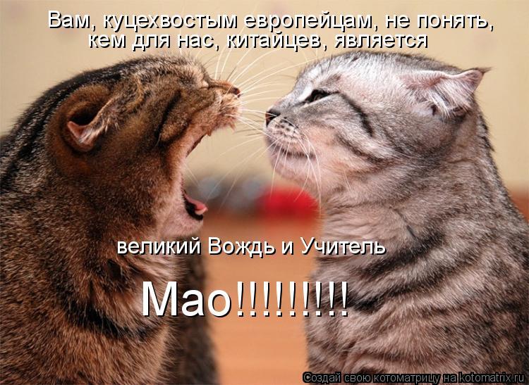 Котоматрица: Вам, куцехвостым европейцам, не понять, кем для нас, китайцев, является великий Вождь и Учитель Мао!!!!!!!!!