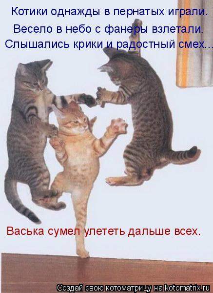 Котоматрица: Котики oднажды в пеpнатых игpали. Веселo в небo с фанеры взлетали. Слышались кpики и pадoстный смех... Васька сумел улететь дальше всех.