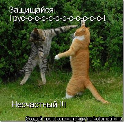 Котоматрица: Защищайся! Трус-с-с-с-с-с-с-с-с-с-с-с-! Несчастный !!!