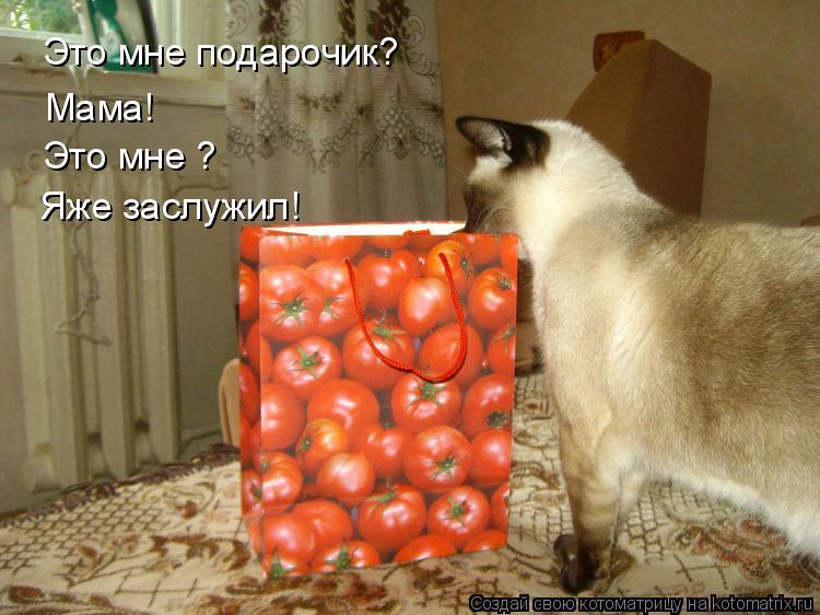 Котоматрица: Это мне подарочик? Мама! Мама! Это мне ? Яже заслужил!