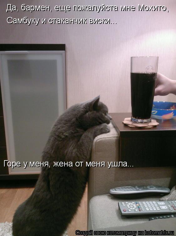 Котоматрица: Да, бармен, еще пожалуйста мне Мохито , Самбуку и стаканчик виски... Горе у меня, жена от меня ушла...