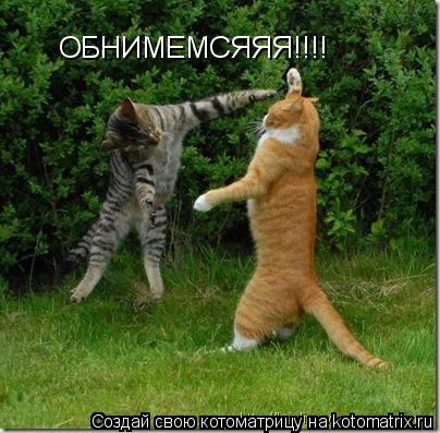 Котоматрица: ОБНИМЕМСЯЯЯ!!!!