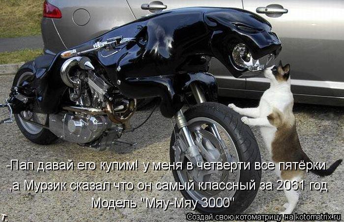 """Котоматрица: -Пап давай его купим! у меня в четверти все пятёрки ,а Мурзик сказал что он самый классный за 2061 год Модель """"Мяу-Мяу 3000"""""""