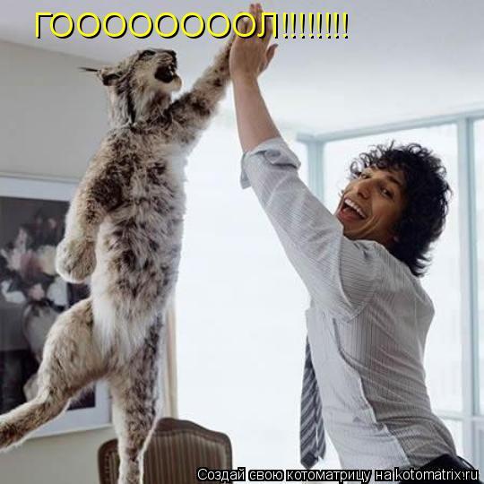 Котоматрица: ГООООООООЛ!!!!!!!!