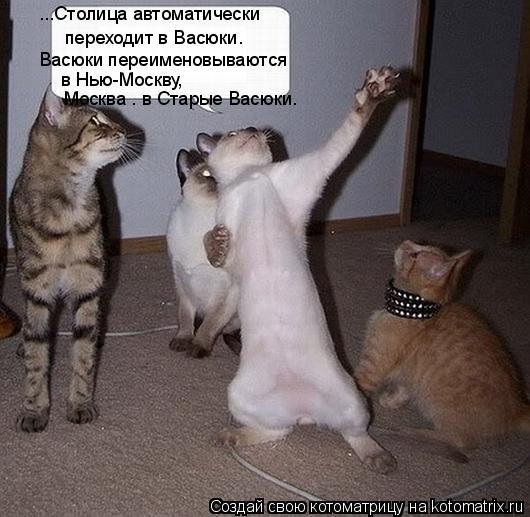 Котоматрица: ...Столица автоматически  переходит в Васюки.  Васюки переименовываются  в Нью-Москву,  Москва — в Старые Васюки.