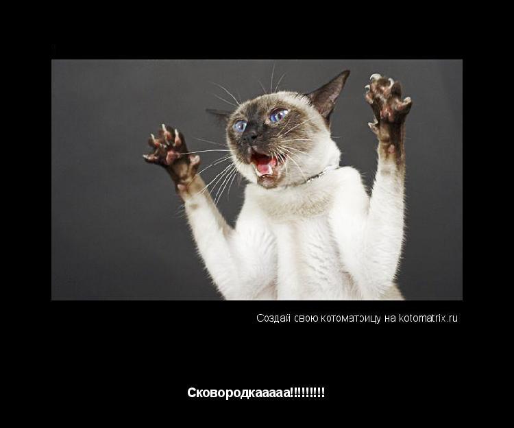 Котоматрица:  Спаситеееее!!!!!!!!!!!!!!! Сковородкааааа!!!!!!!!!