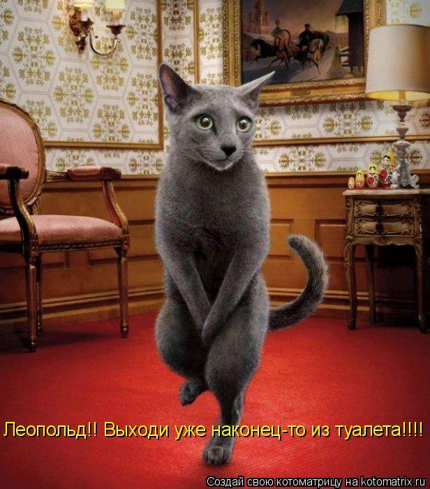 Котоматрица: Леопольд!! Выходи уже наконец-то из туалета!!!!