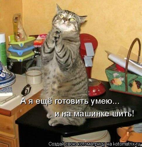 Котоматрица: А я ещё готовить умею... и на машинке шить!