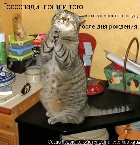 Котоматрица: Госсспади, пошли того, кто перемоет всю посуду после дня рождения