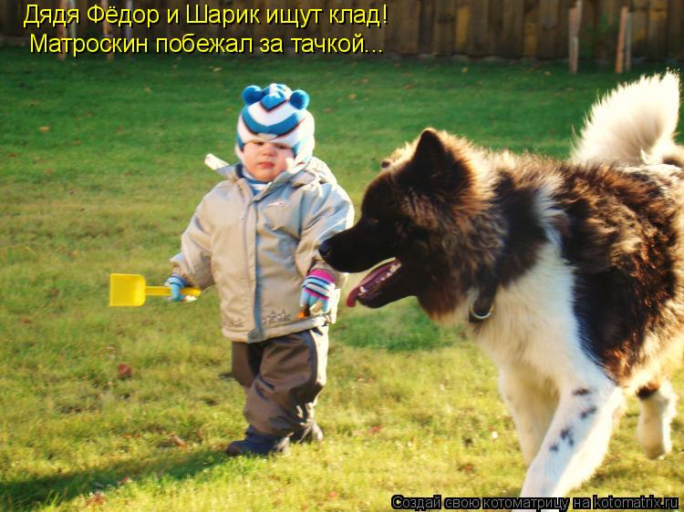 Котоматрица: Дядя Фёдор и Шарик ищут клад! Матроскин побежал за тачкой...