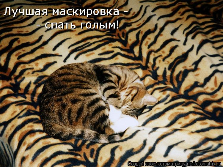 Котоматрица: Лучшая маскировка -  - спать голым!