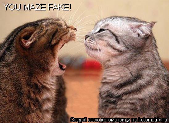 Котоматрица: YOU MAZE FAKE!