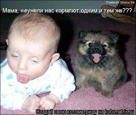Котоматрица: Мама, неужели нас кормлют одним и тем же???