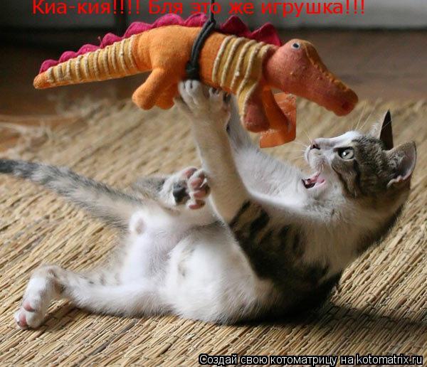 Котоматрица: Киа-кия!!!! Бля это же игрушка!!!
