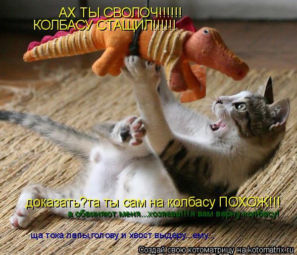 Котоматрица: АХ ТЫ СВОЛОЧ!!!!!! КОЛБАСУ СТАЩИЛ!!!!!! доказать?та ты сам на колбасу ПОХОЖ!!! а обвиняют меня...хозяева!!!я вам верну колбасу! ща тока лапы,голову и