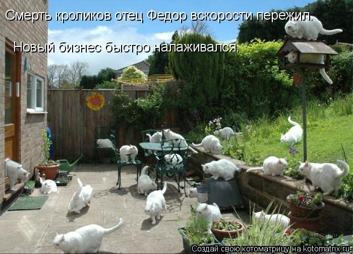 Котоматрица: Смерть кроликов отец Федор вскорости пережил. Новый бизнес быстро налаживался.
