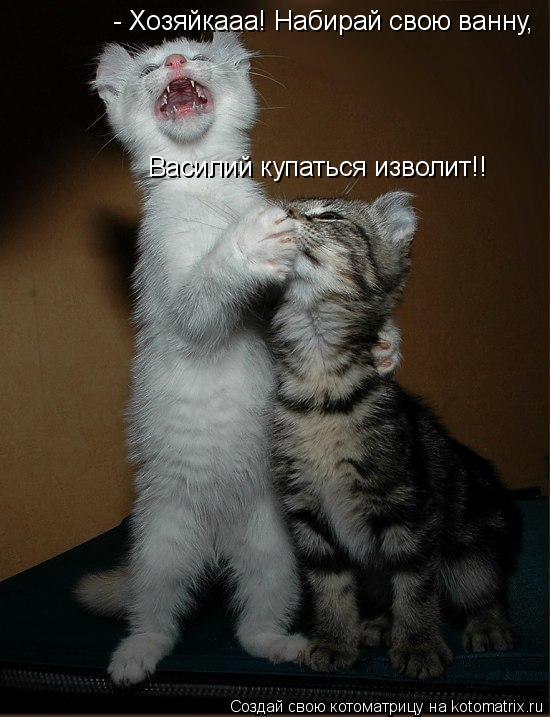 Котоматрица: - Хозяйкааа! Набирай свою ванну,  Василий купаться изволит!!