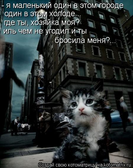 Котоматрица: - я маленький один в этом городе один в этом холоде... где ты, хозяйка моя? иль чем не угодил и ты  бросила меня?...
