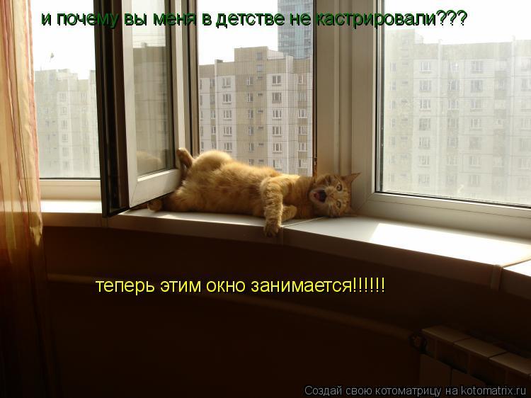 Котоматрица: и почему вы меня в детстве не кастрировали??? теперь этим окно занимается!!!!!!