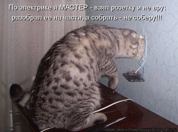 Котоматрица: По электрике я МАСТЕР - взял розетку и не вру: разобрал ее на части, а собрать - не соберу!!!