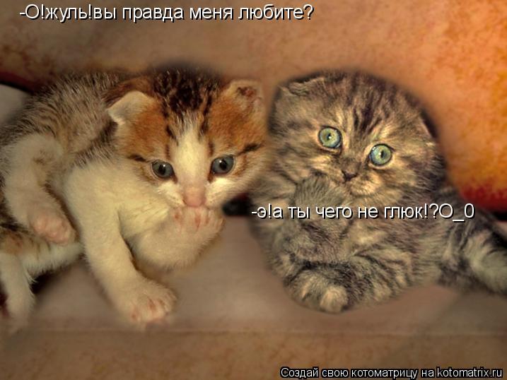 Котоматрица: -О!жуль!вы правда меня любите? -э!а ты чего не глюк!?О_0