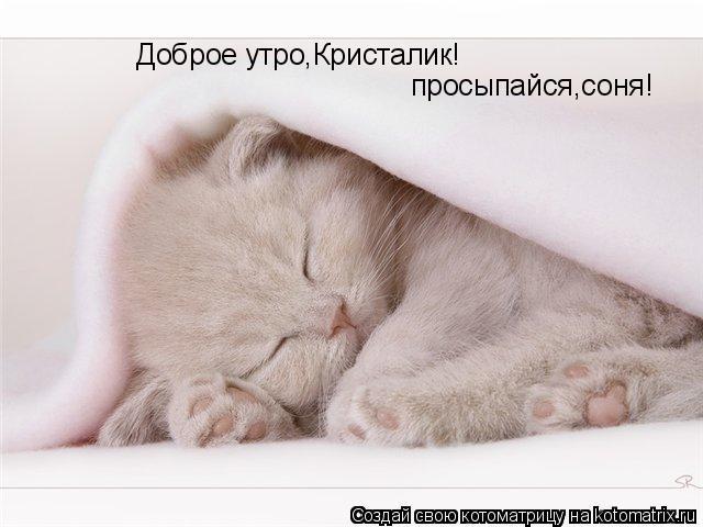 Доброе утро соня