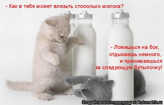 Котоматрица: - Как в тебя может влезьть стооолько молока? - Ложишься на бок, отдыхаешь немного, за следующую бутылочку!  и принимаешься