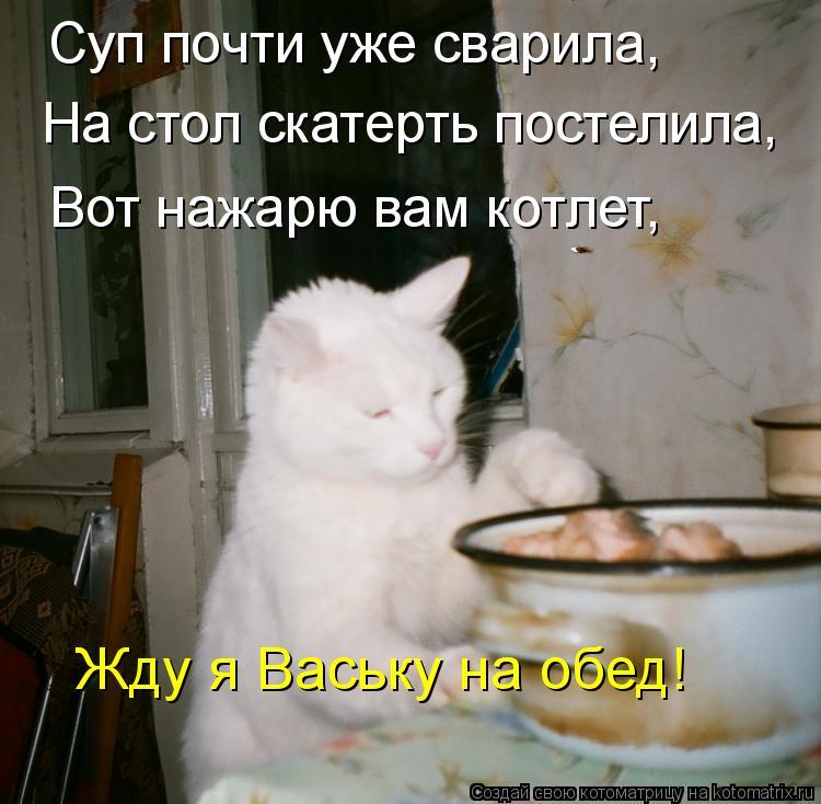 Котоматрица: Суп почти уже сварила, На стол скатерть постелила, Вот нажарю вам котлет, Жду я Ваську на обед!