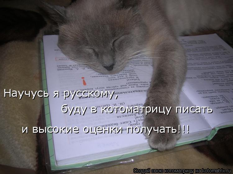 Котоматрица: Научусь я русскому, буду в котоматрицу писать и высокие оценки получать!!!