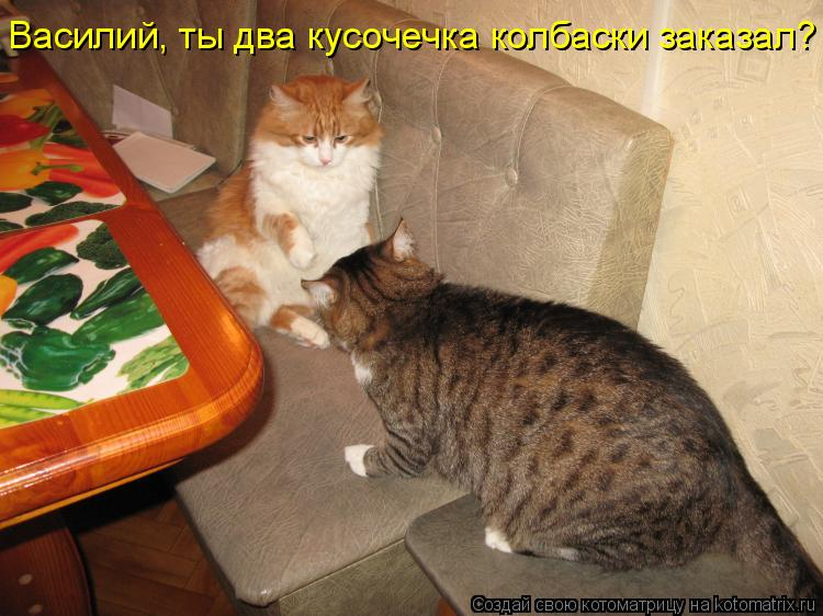 Котоматрица: Василий, ты два кусочечка колбаски заказал?