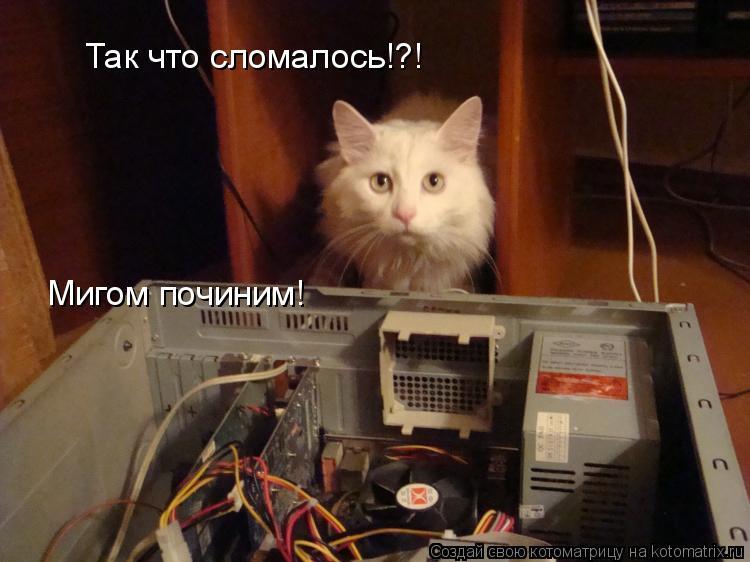 Котоматрица: Так что сломалось!?! Мигом починим!