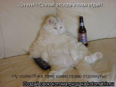 Котоматрица: -Эээээ!!!!Слезай отсюда и пиво отдай! -Ну хозяи!Я же тоже имею право отдохнуть!