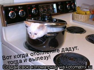 Котоматрица: Вот когда отопление дадут, тогда и вылезу!
