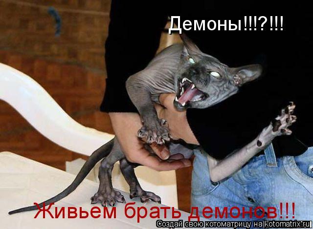 Котоматрица: Демоны!!!?!!! Живьем брать демонов!!!