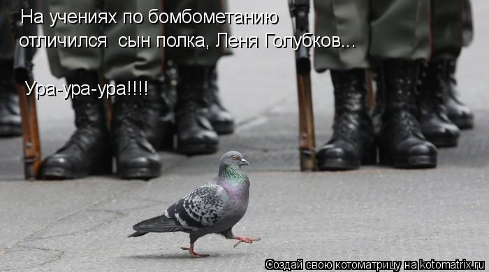 Котоматрица: На учениях по бомбометанию  Ура-ура-ура!!!! отличился  сын полка, Леня Голубков...