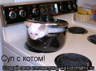 Котоматрица: Суп с котом!