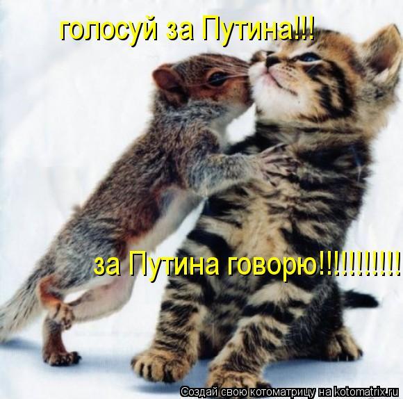 Котоматрица: голосуй за Путина!!! за Путина говорю!!!!!!!!!!!!!!