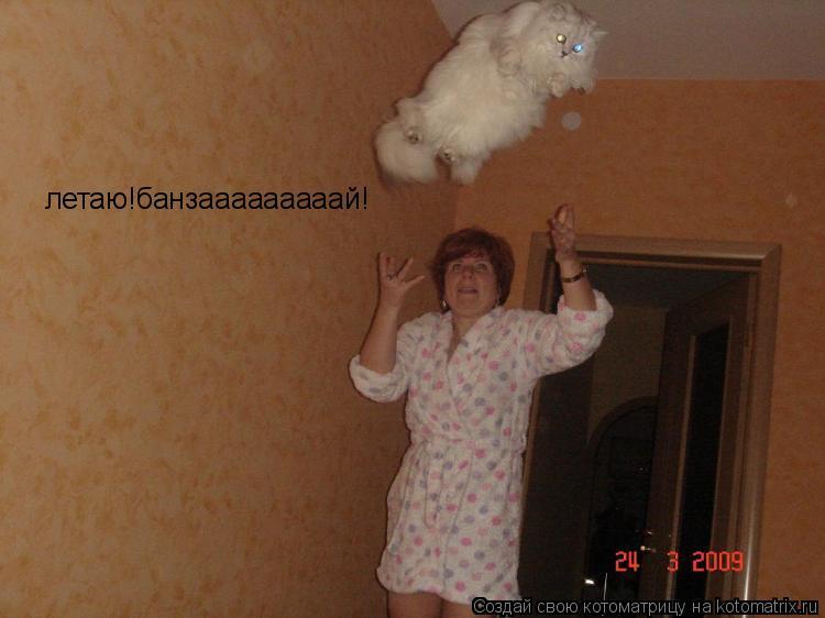 Котоматрица: летаю!банзааааааааай!