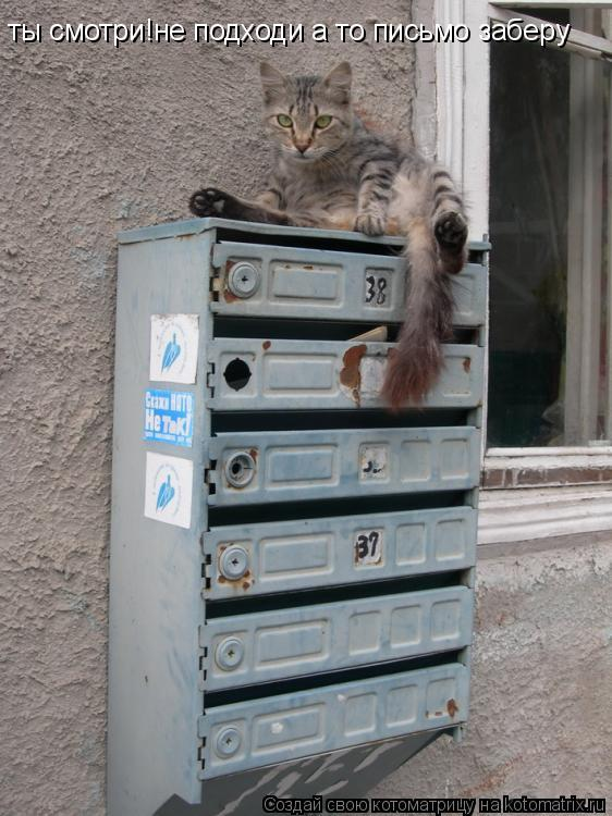 Котоматрица: ты смотри!не подходи а то письмо заберу