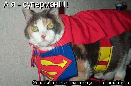 Котоматрица: А я - супермэн!!!!