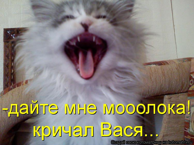 Котоматрица: -дайте мне мооолока! кричал Вася...