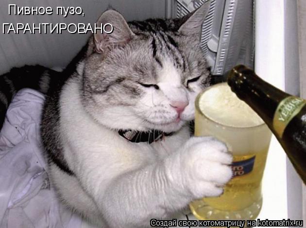 Котоматрица: Пивное пузо,  ГАРАНТИРОВАНО