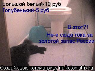 Котоматрица: Большой белый-10 руб Голубенький-5 руб В этот?! Не-е,сюда тока за  золотой запас России