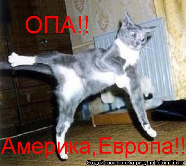 Котоматрица: ОПА!! Америка,Европа!!