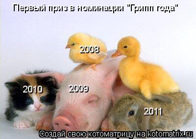 """Котоматрица: Первый приз в номинации """"Грипп года"""" 2008 2009 2010 2011"""