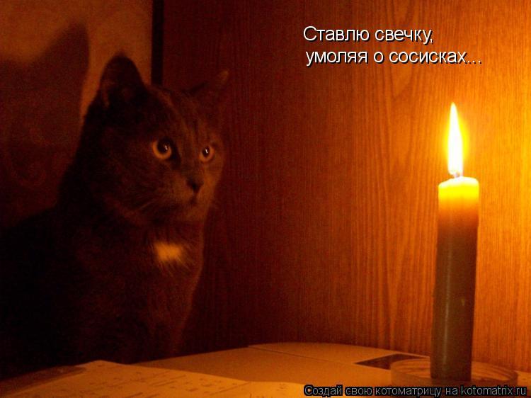 Котоматрица: Ставлю свечку, умоляя о сосисках...