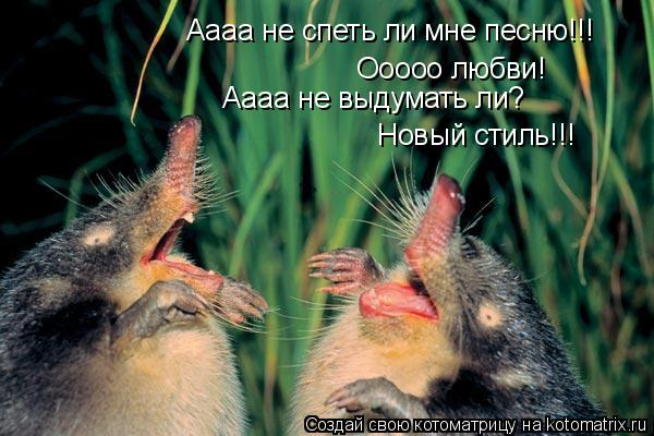 Котоматрица: Аааа не спеть ли мне песню!!! Ооооо любви! Аааа не выдумать ли? Новый стиль!!!
