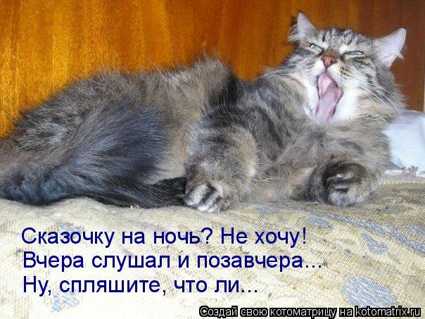 Котоматрица: Сказочку на ночь? Не хочу! Вчера слушал и позавчера... Ну, спляшите, что ли...