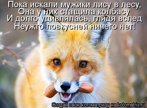 Котоматрица: Пока искали мужики лису в лесу, Она у них стащила колбасу И долго удивлялась, глядя вслед Неужто повкусней ничего нет!