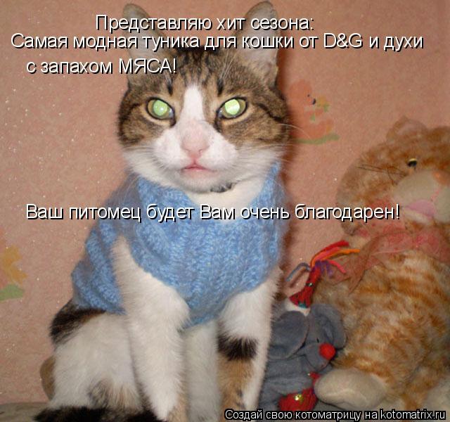 Котоматрица: Представляю хит сезона: Самая модная туника для кошки от D&G и духи с запахом МЯСА! Ваш питомец будет Вам очень благодарен!